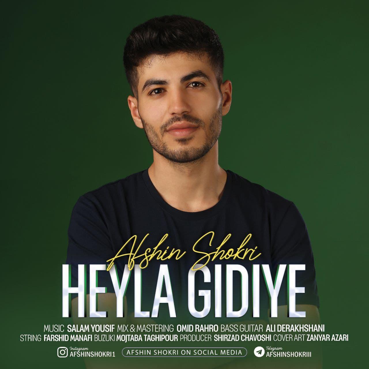 Afshin Shokri – Heyla Gidiye