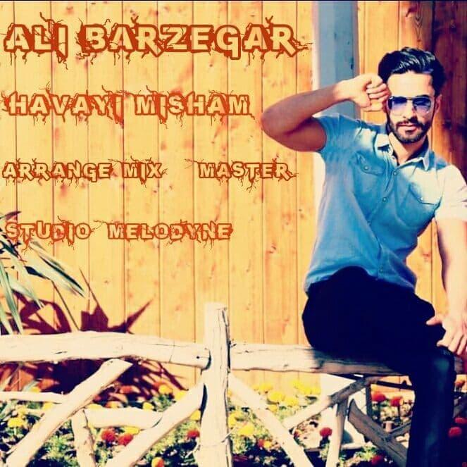 Ali Barzegar – Havayi Misham