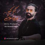 Alireza Hashemi – Begam Nagam