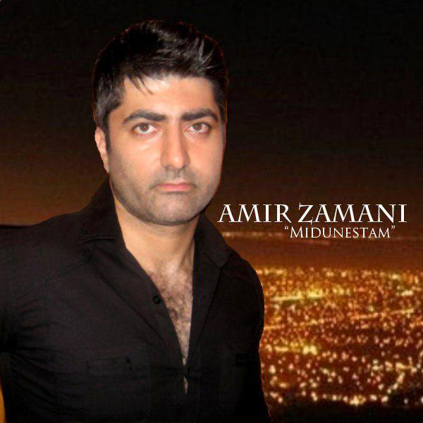 Amir Zamani – Midunestam