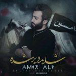 AmirAli – Shayad Dir Shode