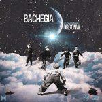 DRGONW – bachegia