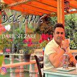 Dariush Zare – Dele Man