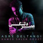 Hamed Saleh Doust – Asre Deltangi