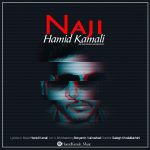 Hamid Kamali – Naji
