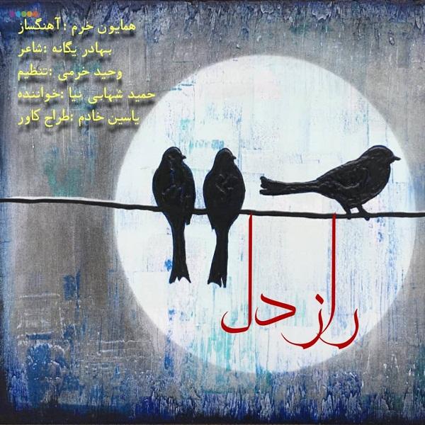 Hamid Shahabi Nia – Raze Del