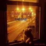 Saeghe – Shabe Valen