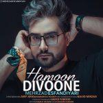 Mehrzad Esfandiyari – Hamoon Divoone