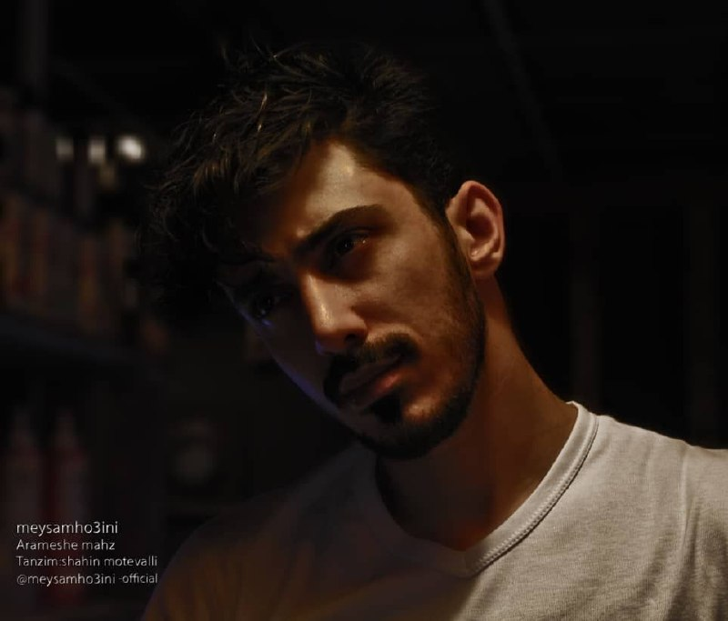 Meysam Ho3ini – Arameshe Mahz
