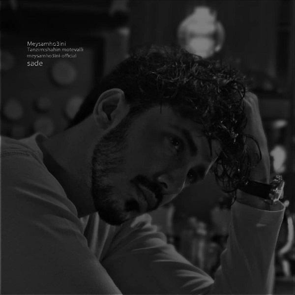 Meysam Ho3ini – Sade