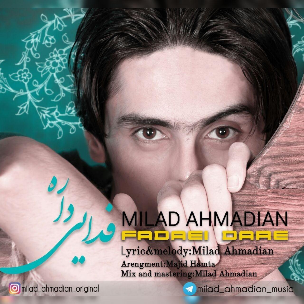 Milad Ahmadian – Fadaei Dare