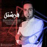 Mohamadreza Khanzadi – Fereshteh