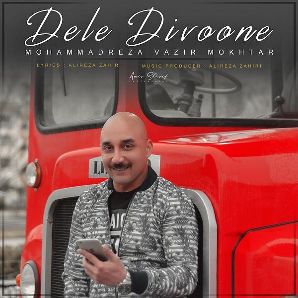 Mohammadreza Vazirmokhtar – Dele Divone