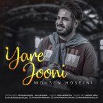 Mohsen Hoseini – Yare jooni