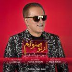 Parviz Babaei – Az To Mamnoonam
