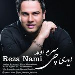 Reza Nami – Didi Chi Saram Oumad