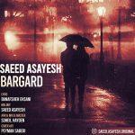 Saeed Asayesh – Bargard