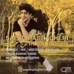 Saeed Haji Bagheri – In Ghorooba