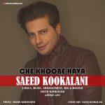 Saeed Kookalani – Che Khoobe Hava