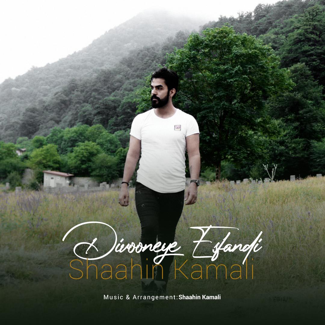 Shahin Kamali – Divooneye Esfandi