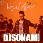Vesal Amiri – Are (DJ Sonami Remix)