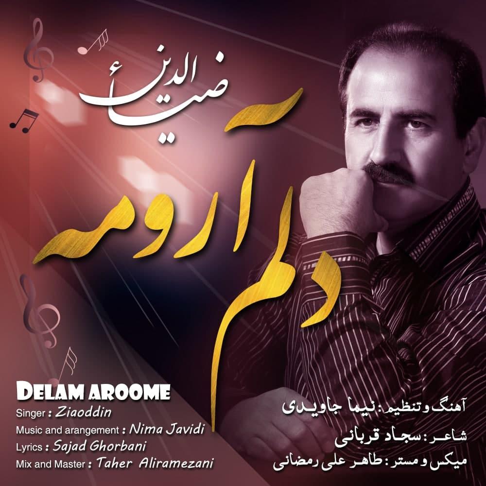 Ziaoddin – Delam Aroome