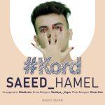 Saeed Hamel – #Kord