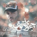 Pooyan Mokhtari – Chejoori Toonest